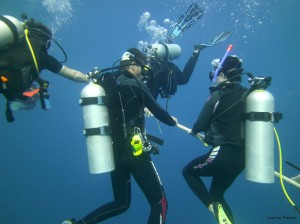 MV Giamani Safety Stop - A must for Similan Islands Diving Safaris