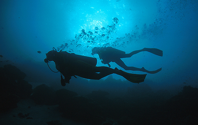 Morning Dive on Khao Lak Diving Sites