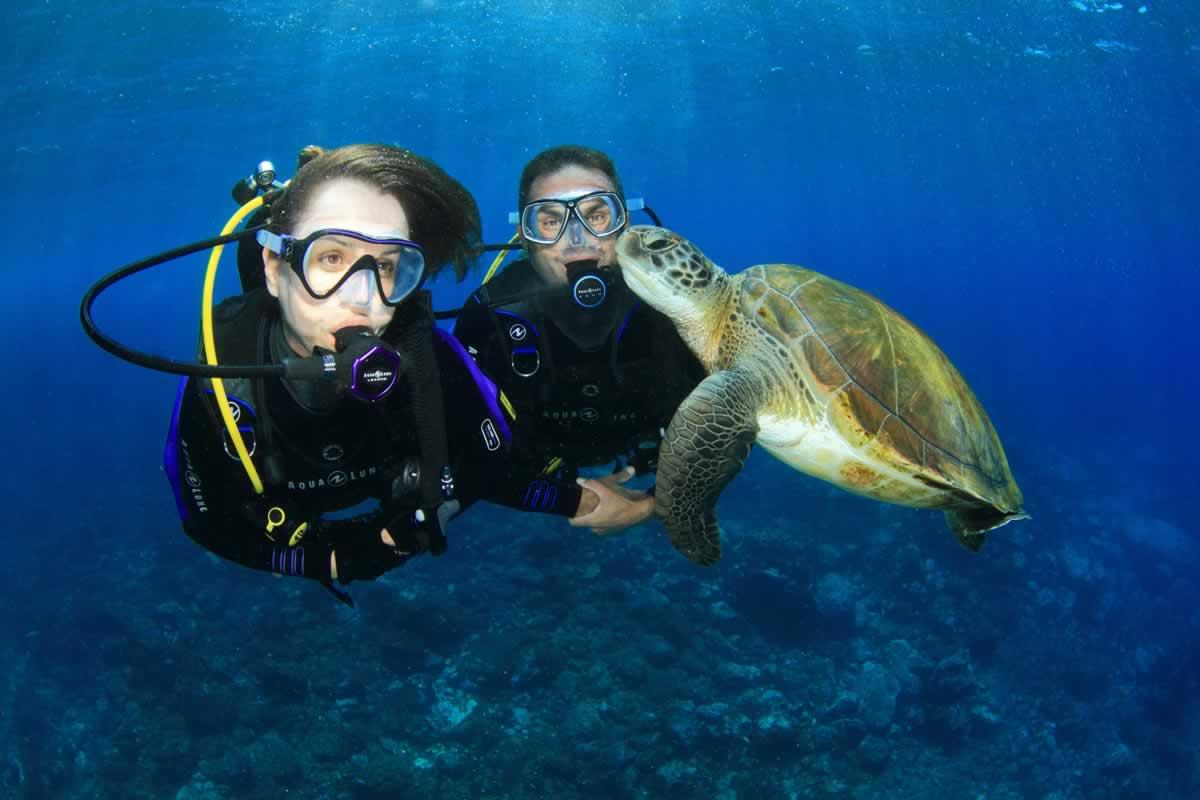 Bcd diving gear colona liveaboards scuba diving - Dive dive dive ...
